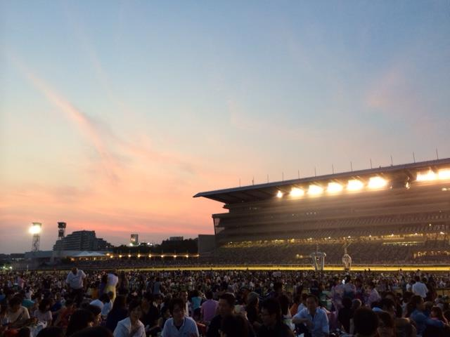 東京競馬場の花火大会場所取りは必要?注意点は?【画像あり】